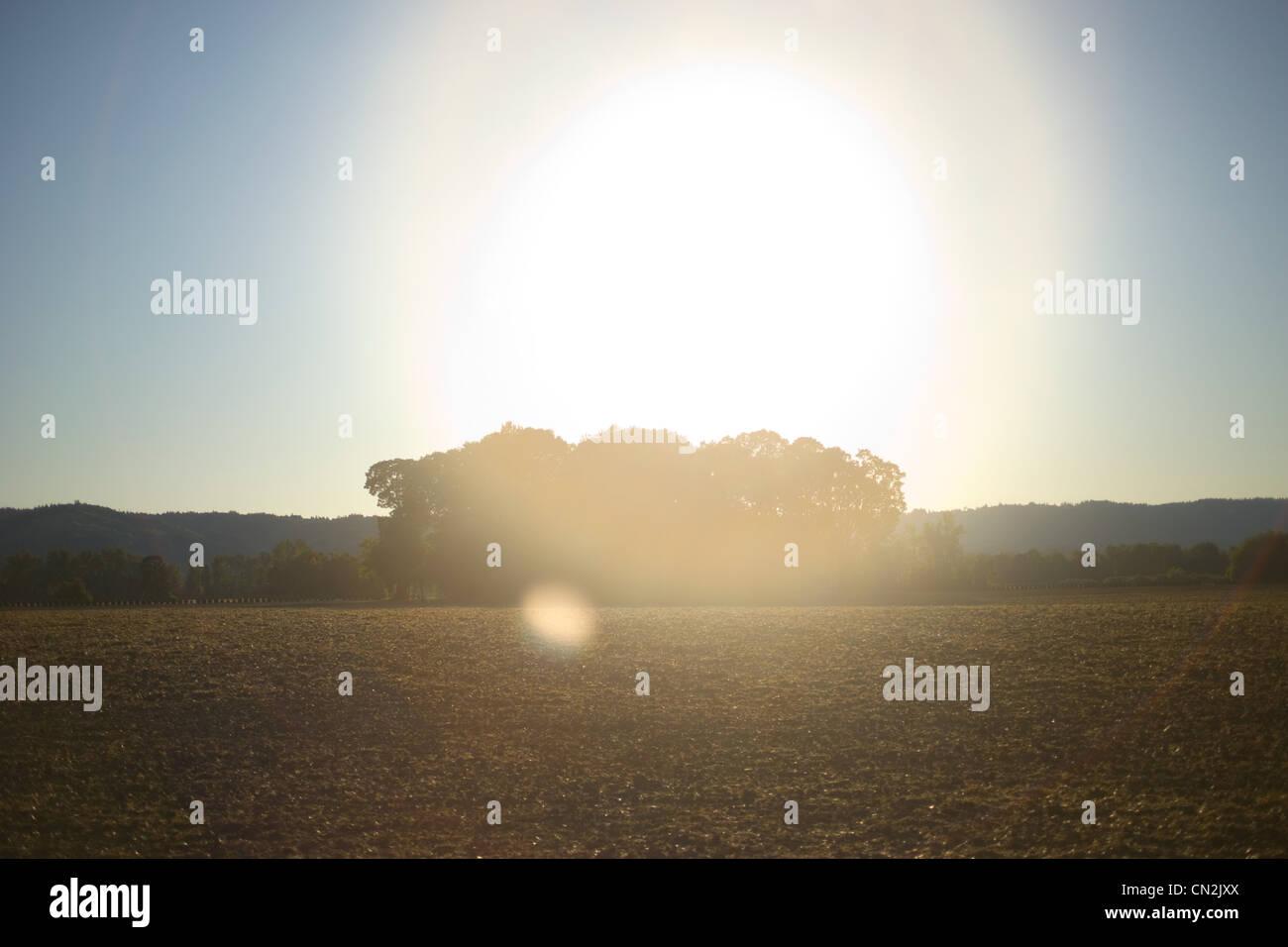 Rural summer landscape - Stock Image