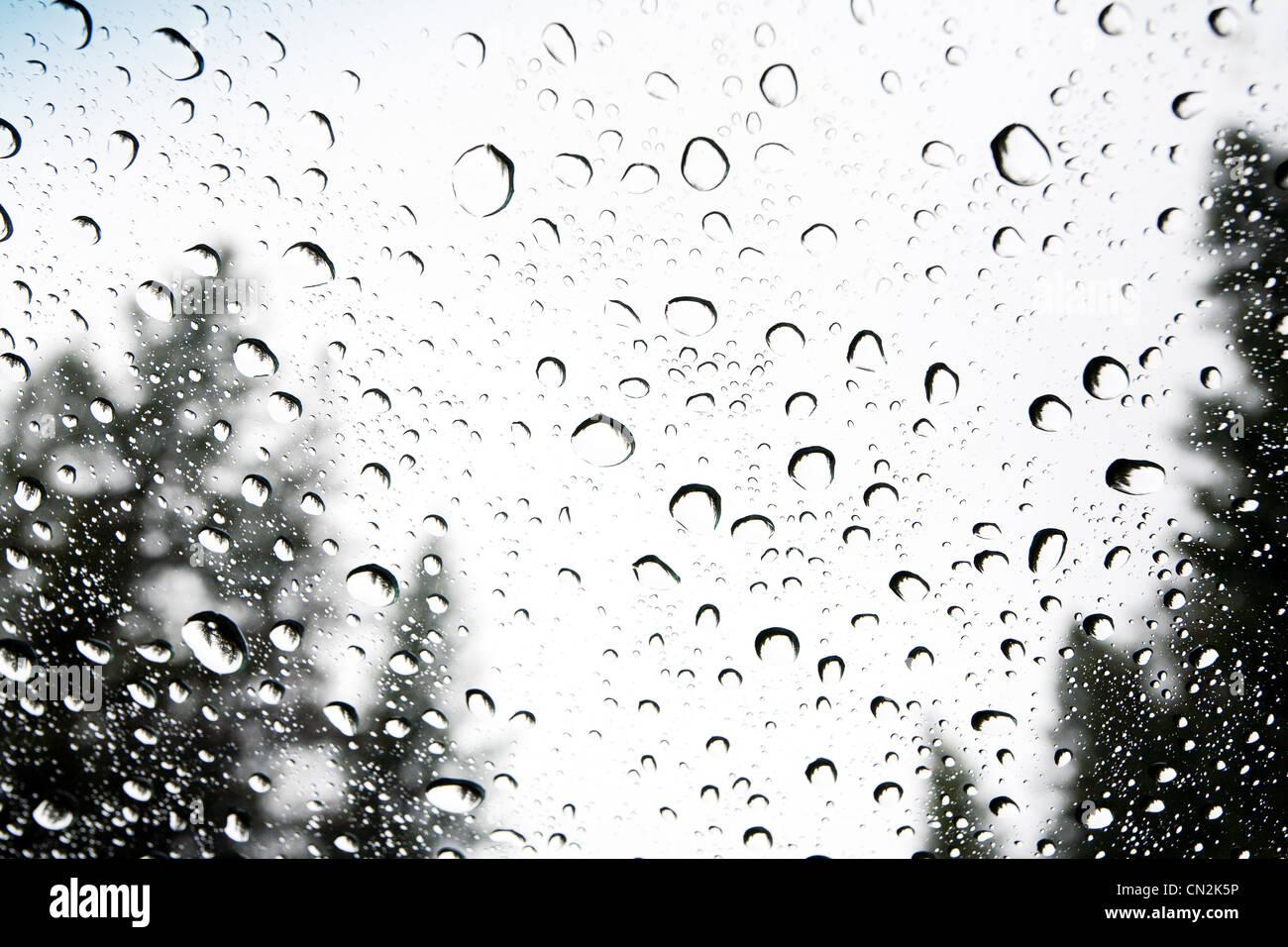 Raindrops on Window - Stock Image