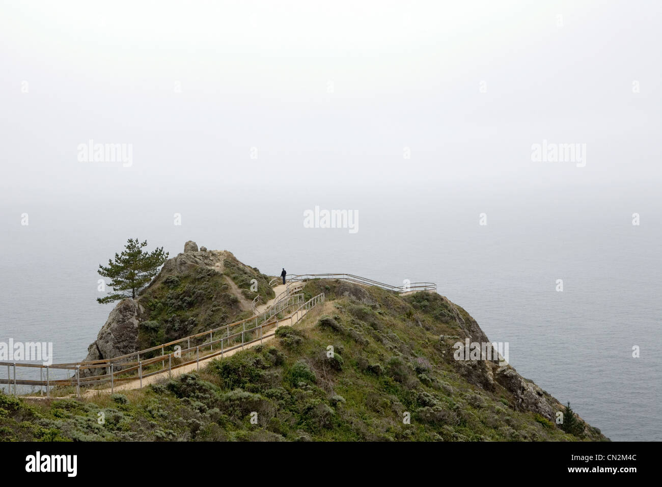 Man looking at view, Muir Beach Overlook, Golden Gate National Park, California, USA - Stock Image