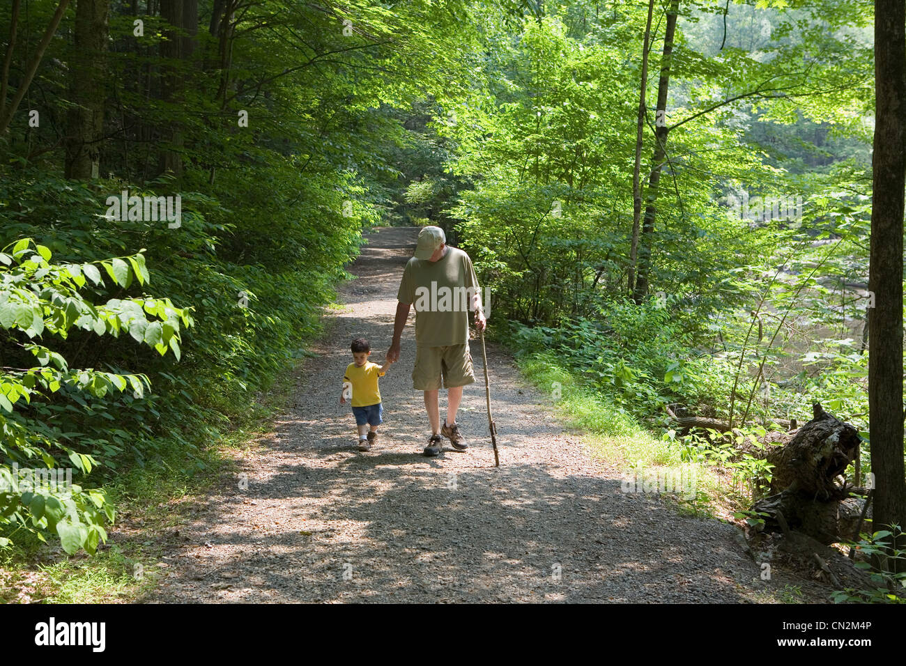 Grandfather and grandson walking along forest path - Stock Image
