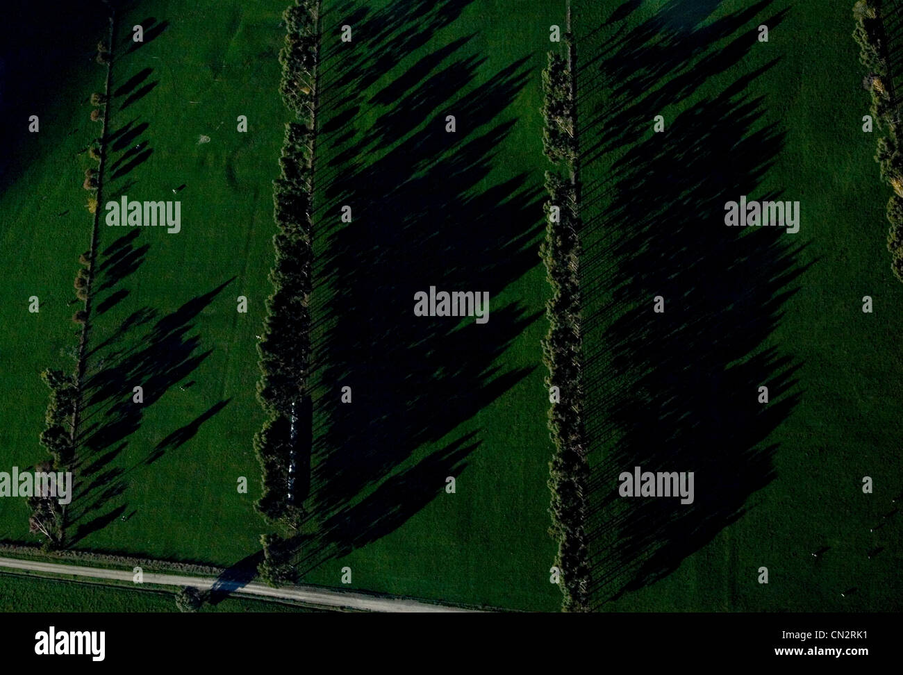 View from helicopter of fields in South Island, New Zealand - Stock Image