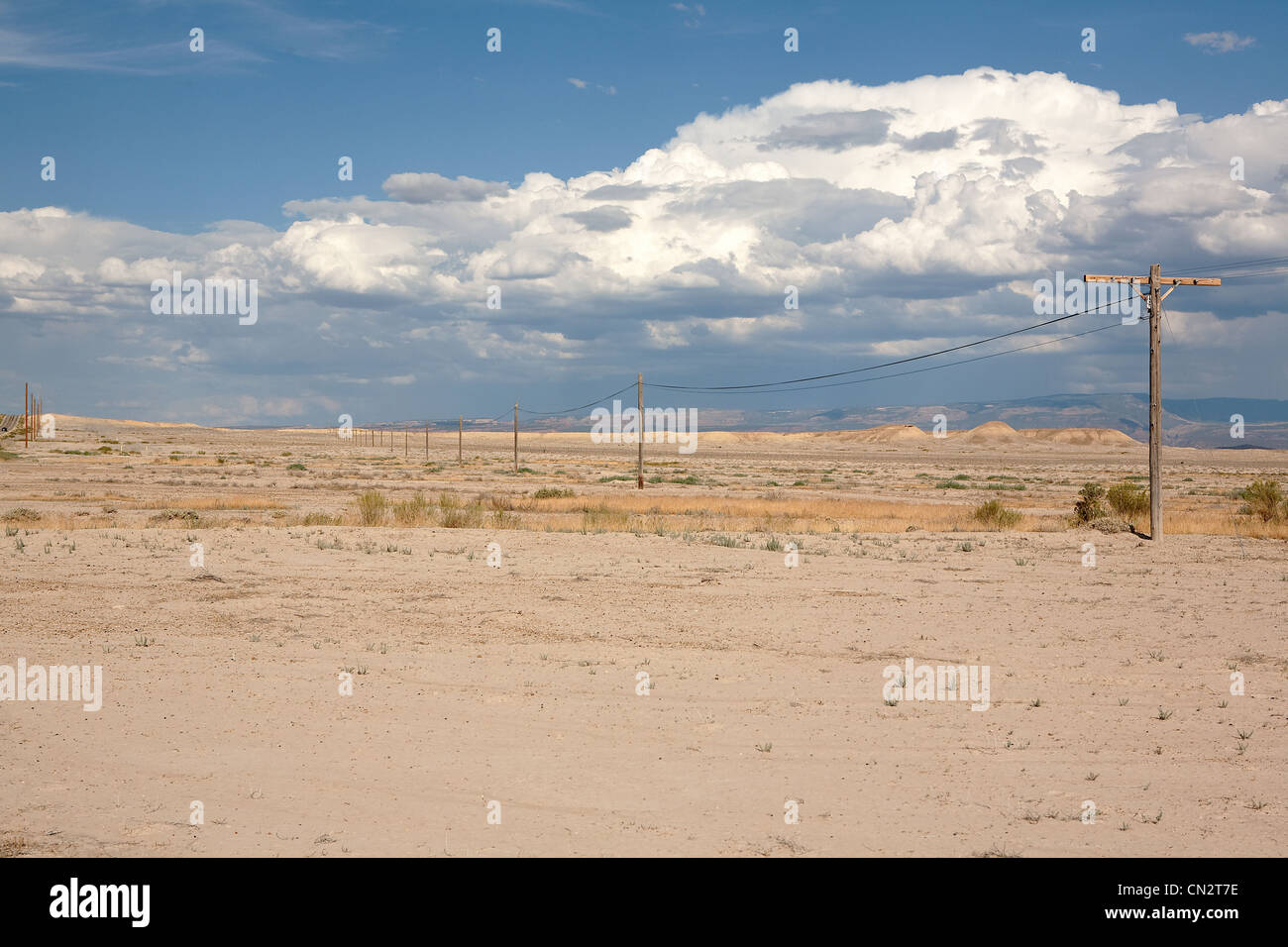 Electrical poles in isolated scene, Utah, USA - Stock Image