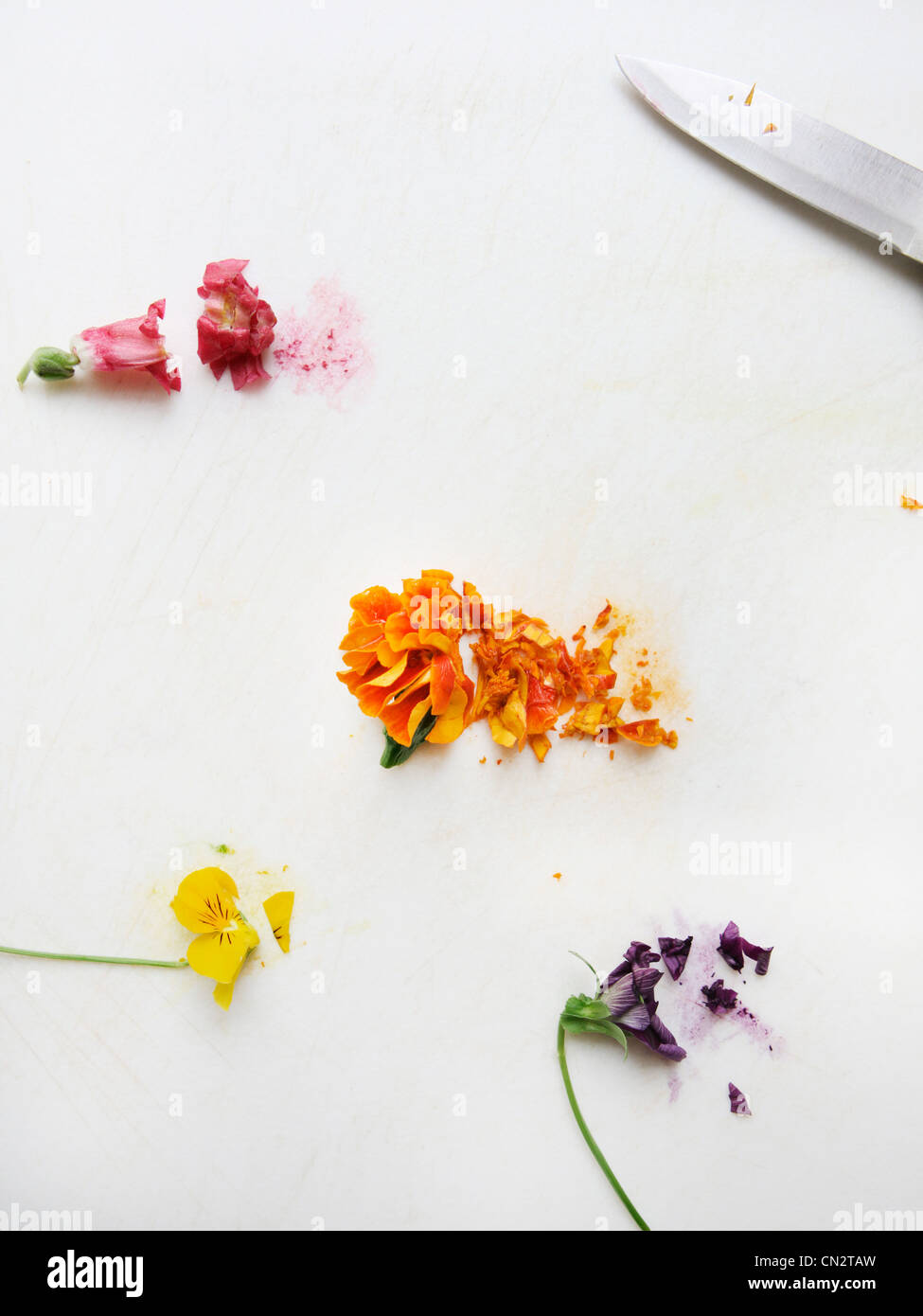 Chopped edible flowers - Stock Image