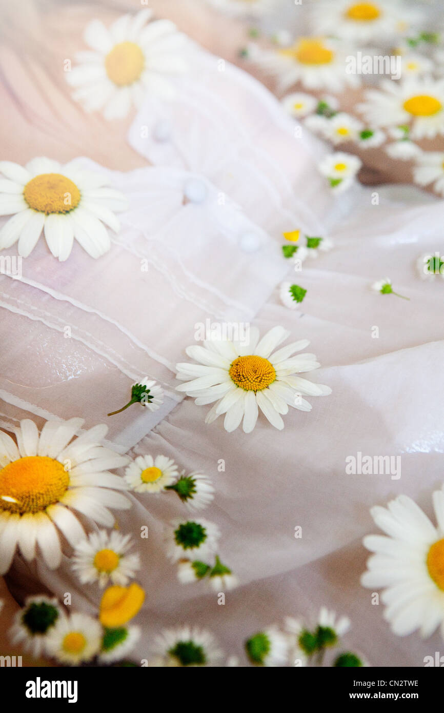 Woman in water with daisies floating on surface - Stock Image