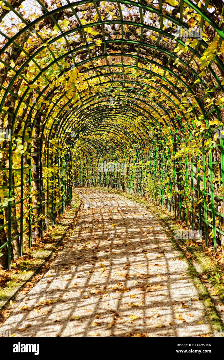 Covered path in gardens - Stock Image