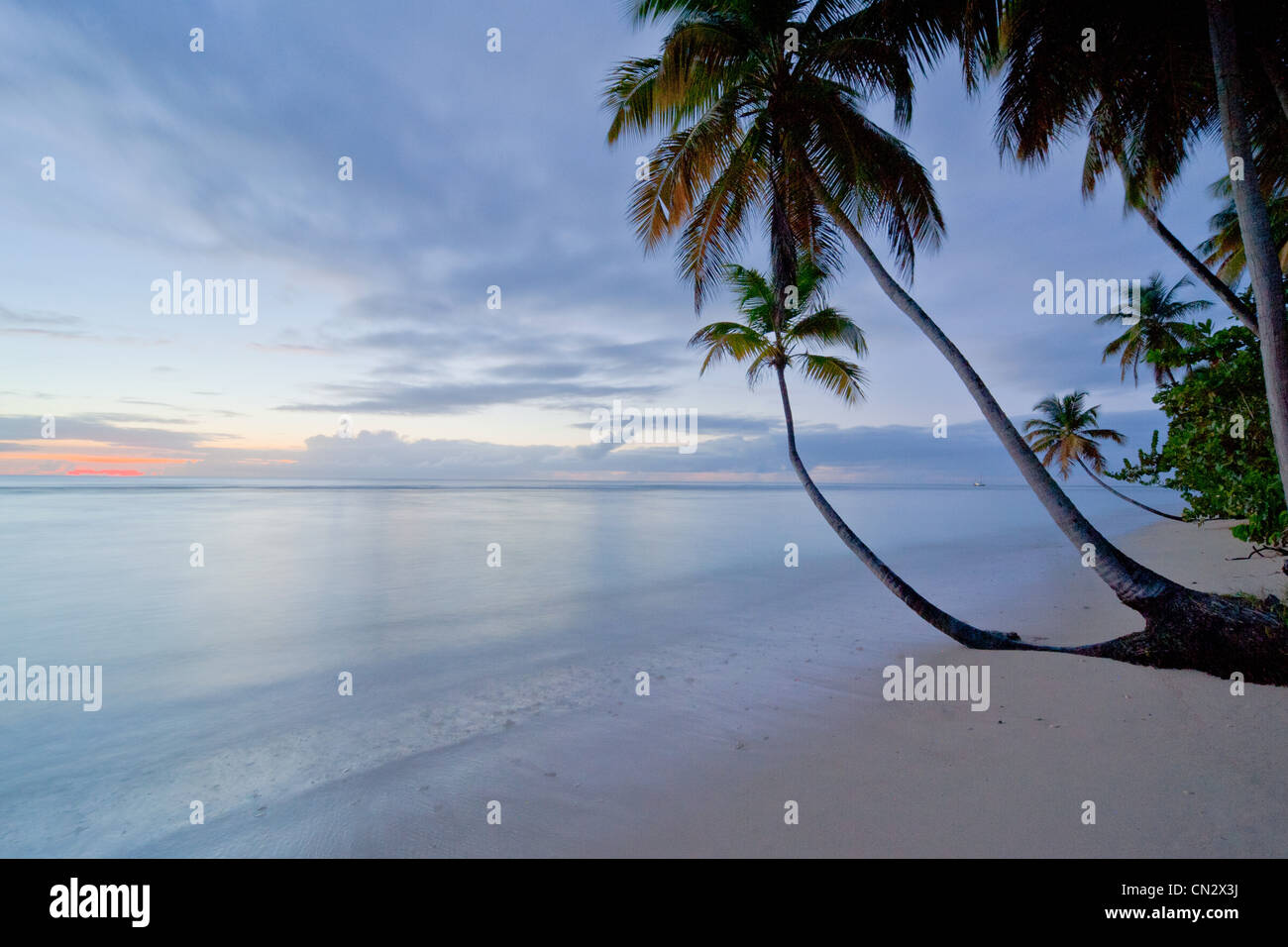 Pigeon Point beach at evening time, Tobago - Stock Image