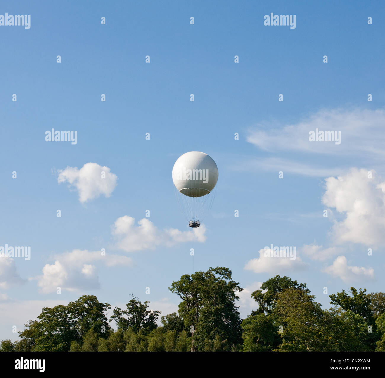 White hot air balloon above trees - Stock Image