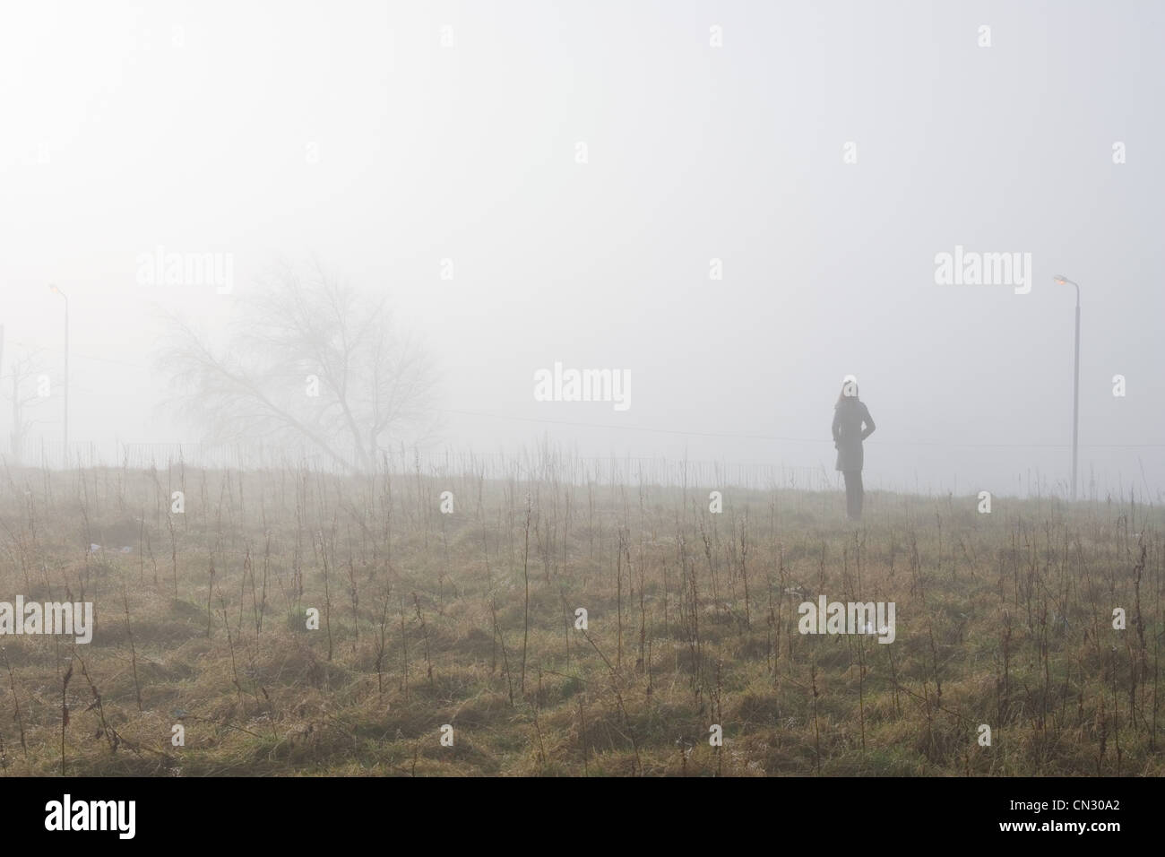 Teenage girl standing in field in the mist - Stock Image