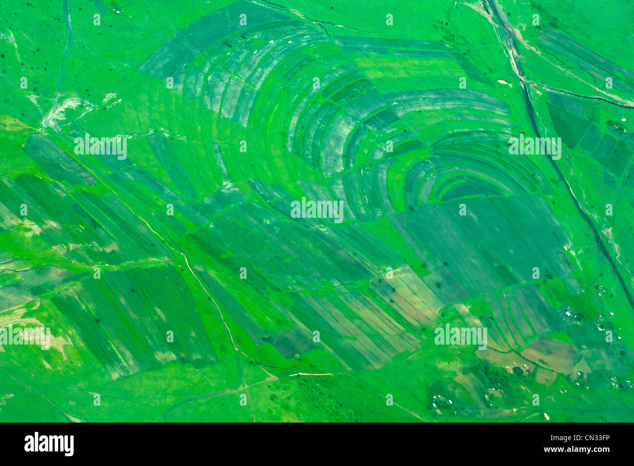 Aerial view of green fields, Tanzania, Africa - Stock Image