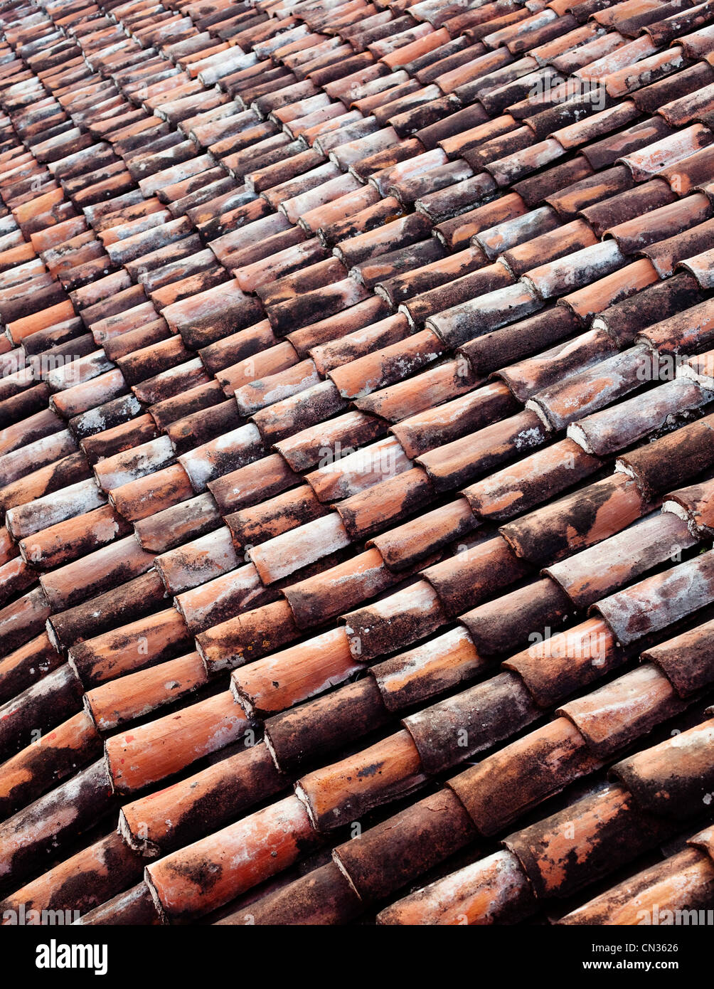 Clay roof tiles, full frame - Stock Image