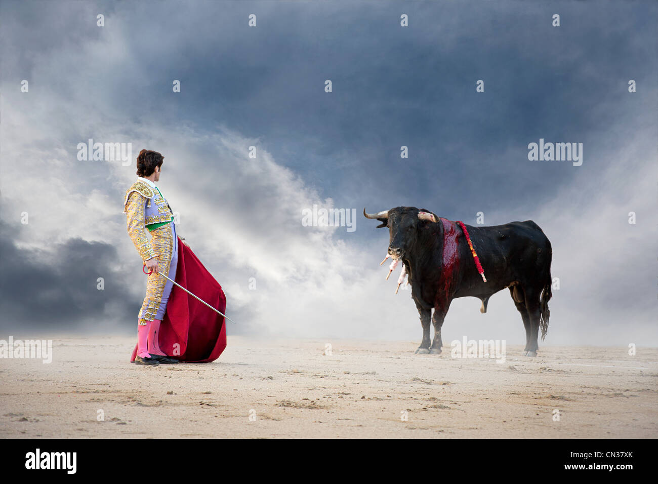 Bullfighter holding red cape with bull, Las Ventas bullring, Madrid - Stock Image
