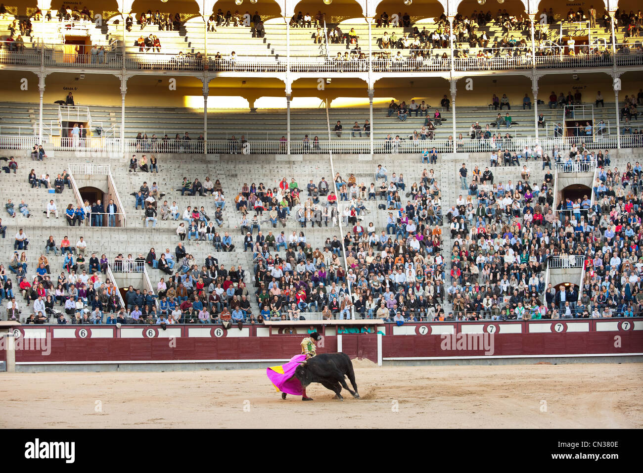 Bullfighter with bull in Las Ventas bullring with audience, Madrid - Stock Image