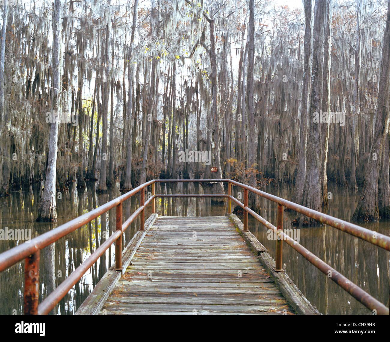 Jetty in swamp, Louisiana, USA - Stock Image