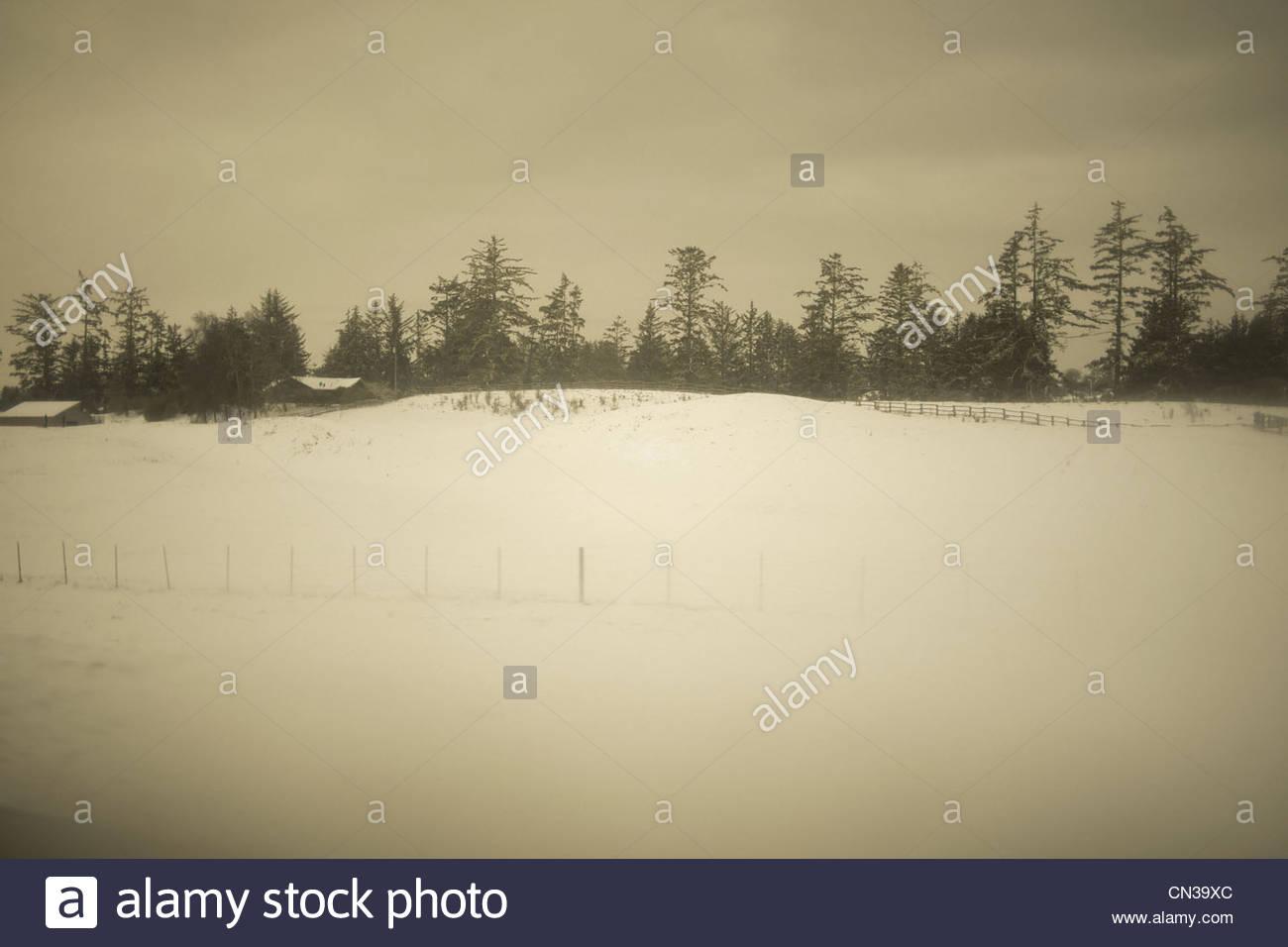 Rural scene in snow, Astoria, Oregon, USA Stock Photo