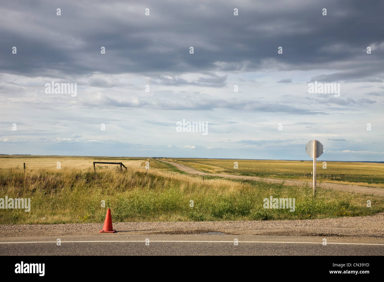 Traffic cone on rural road - Stock Image
