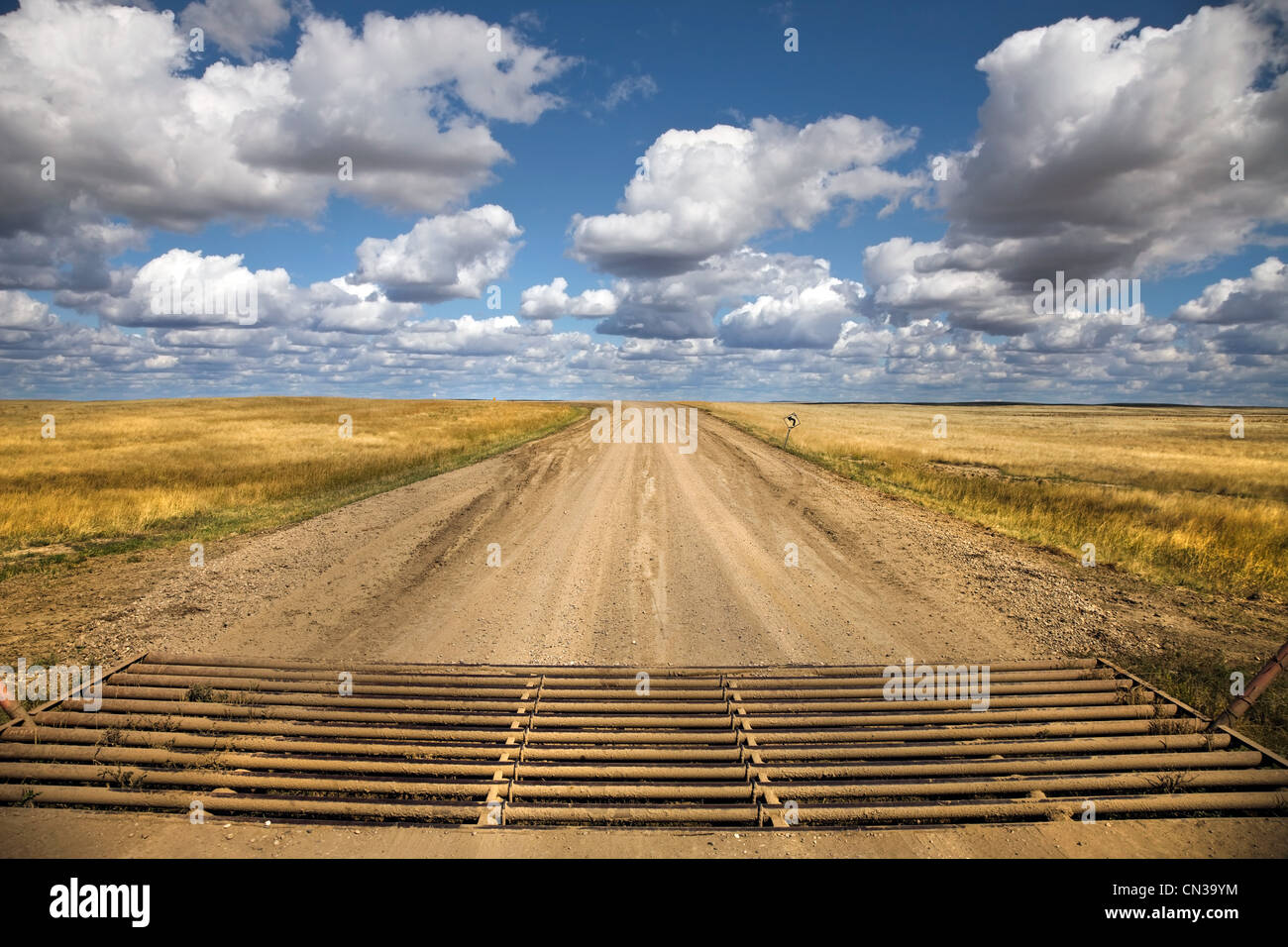 Texas gate, rural road - Stock Image