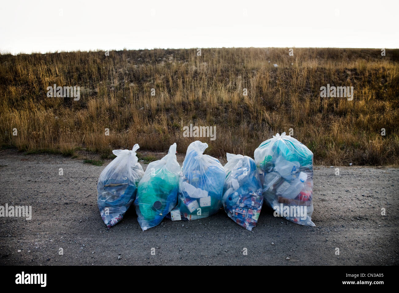 Recycling bags on a road - Stock Image