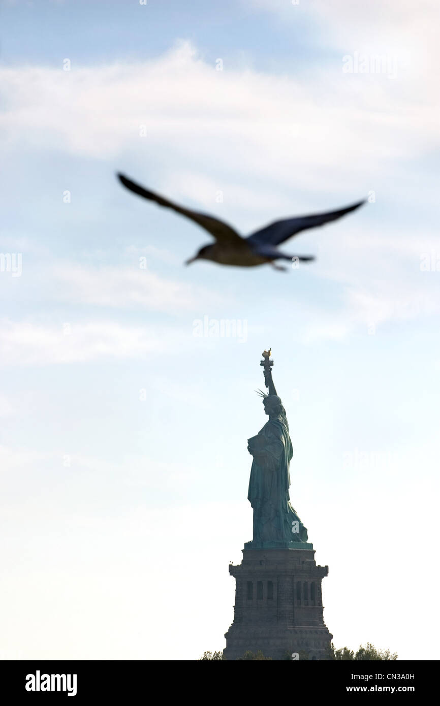 Bird flying over Statue of Liberty, New York - Stock Image