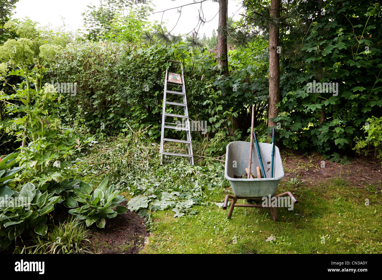 Working in the garden - Stock Image