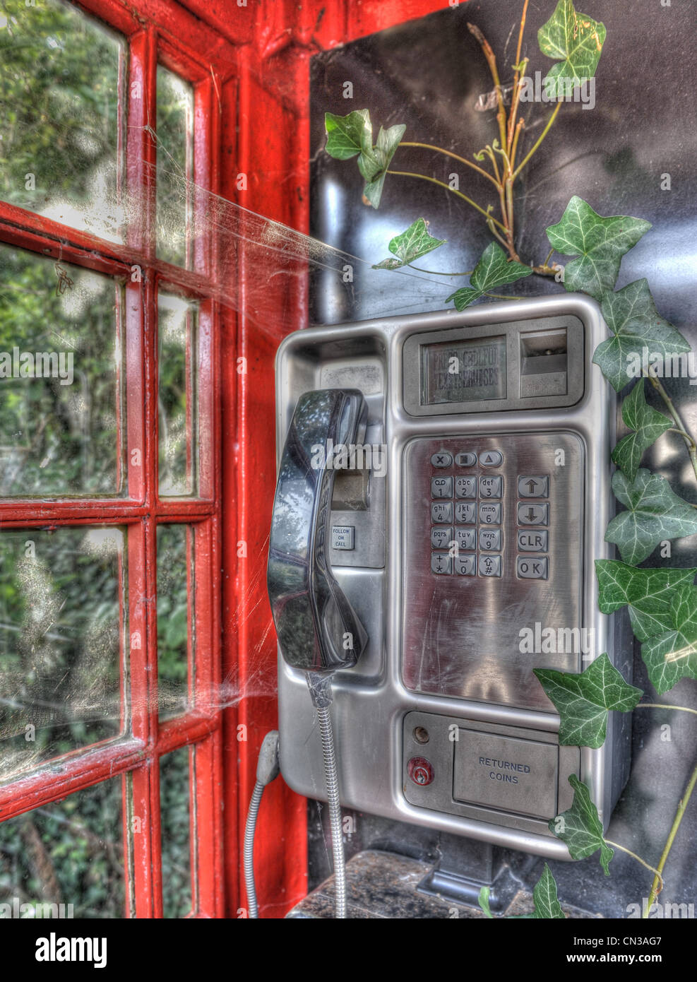Disused telephone booth with ivy growing inside - Stock Image
