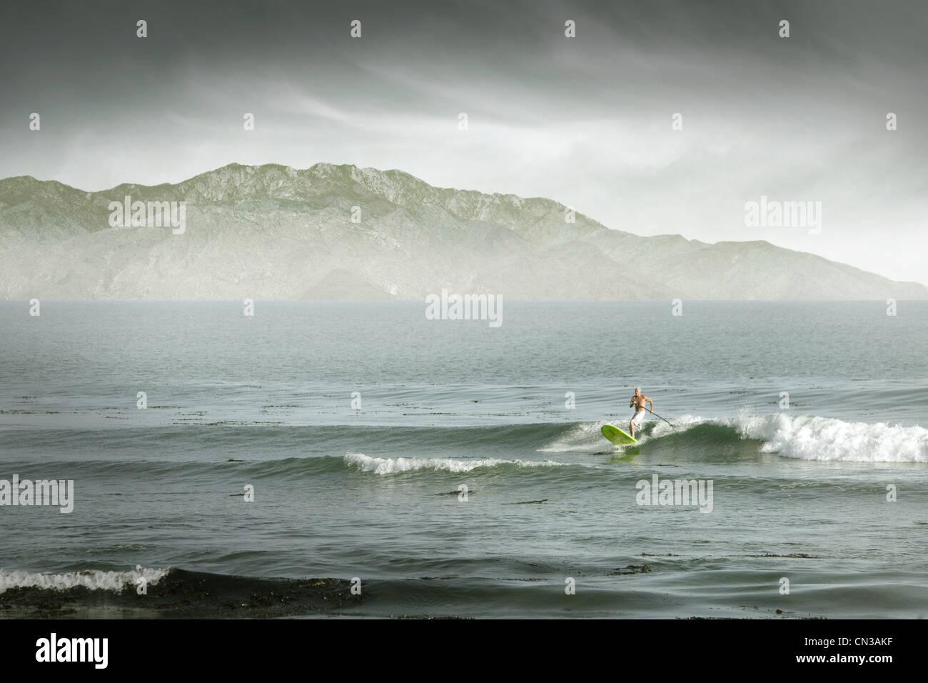 Man surfing, Santa Cruz, California, USA - Stock Image