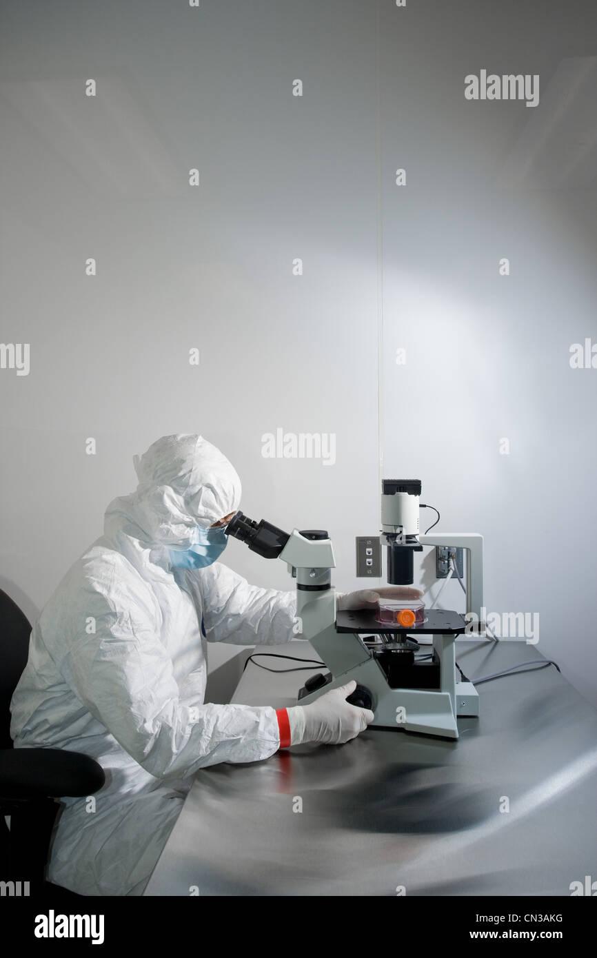 Scientist using microscope in laboratory - Stock Image