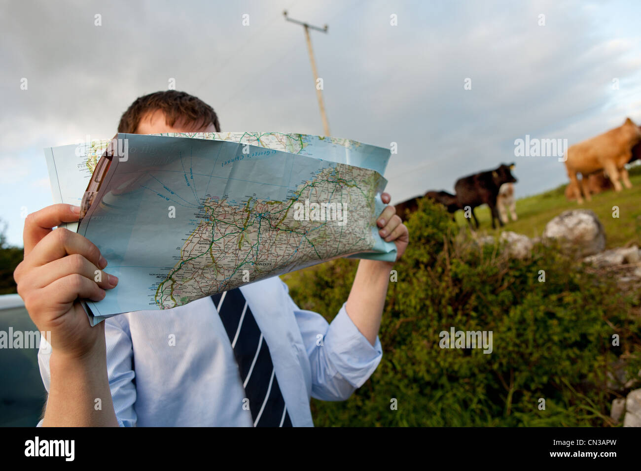 Businessman reading map in countryside - Stock Image