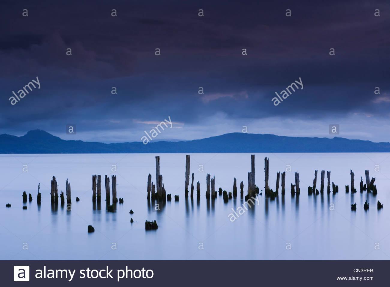 Pilings, Astoria, Columbia River, Oregon - Stock Image