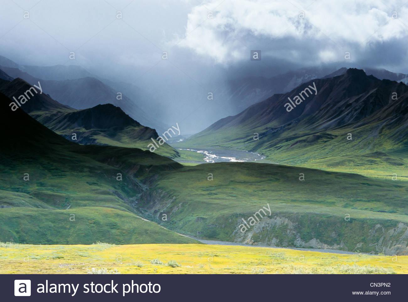 Polychrome Pass, Denali National Park, Alaska, USA - Stock Image