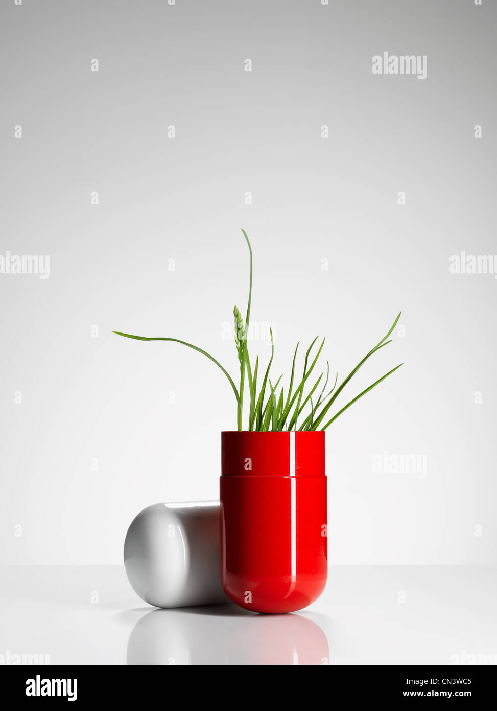 Plant growing out of red capsule - Stock Image