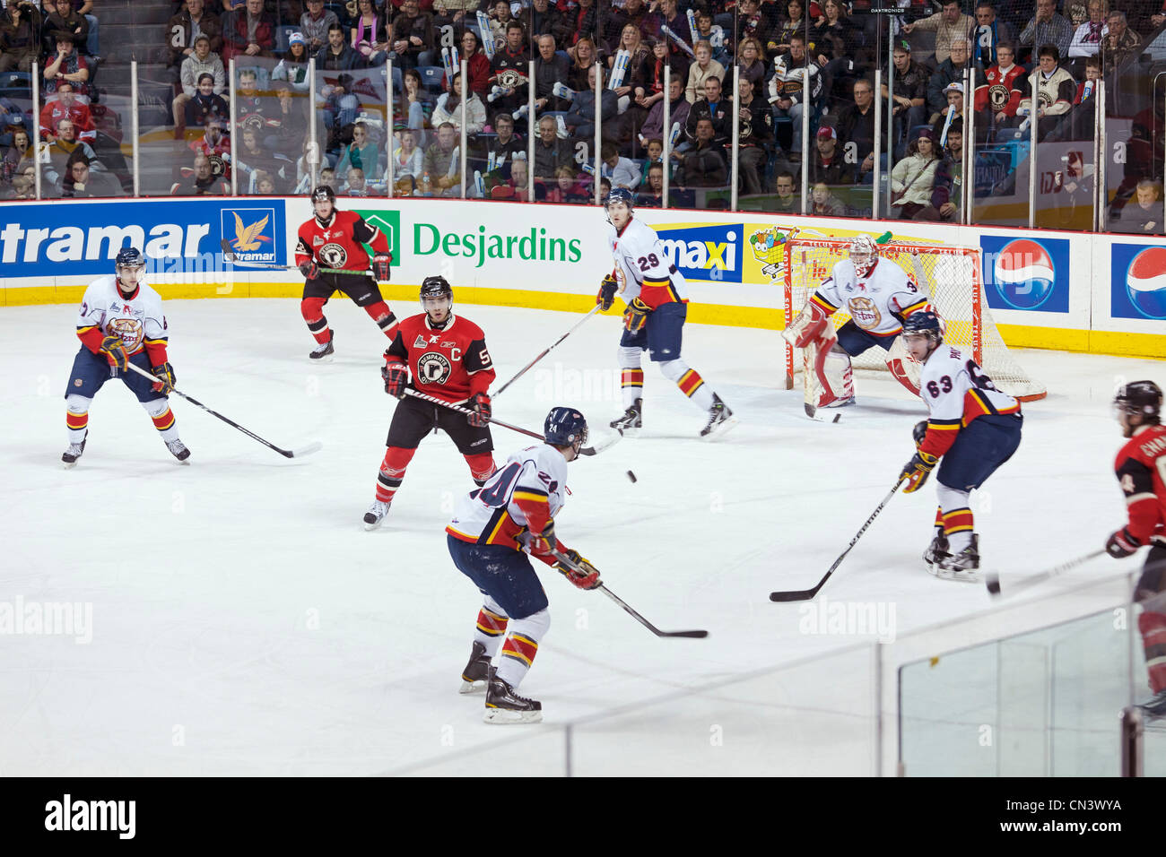 Canada, Quebec province, Quebec, the arena of the Coliseum sports complex, ice hockey team Quebec Remparts game - Stock Image