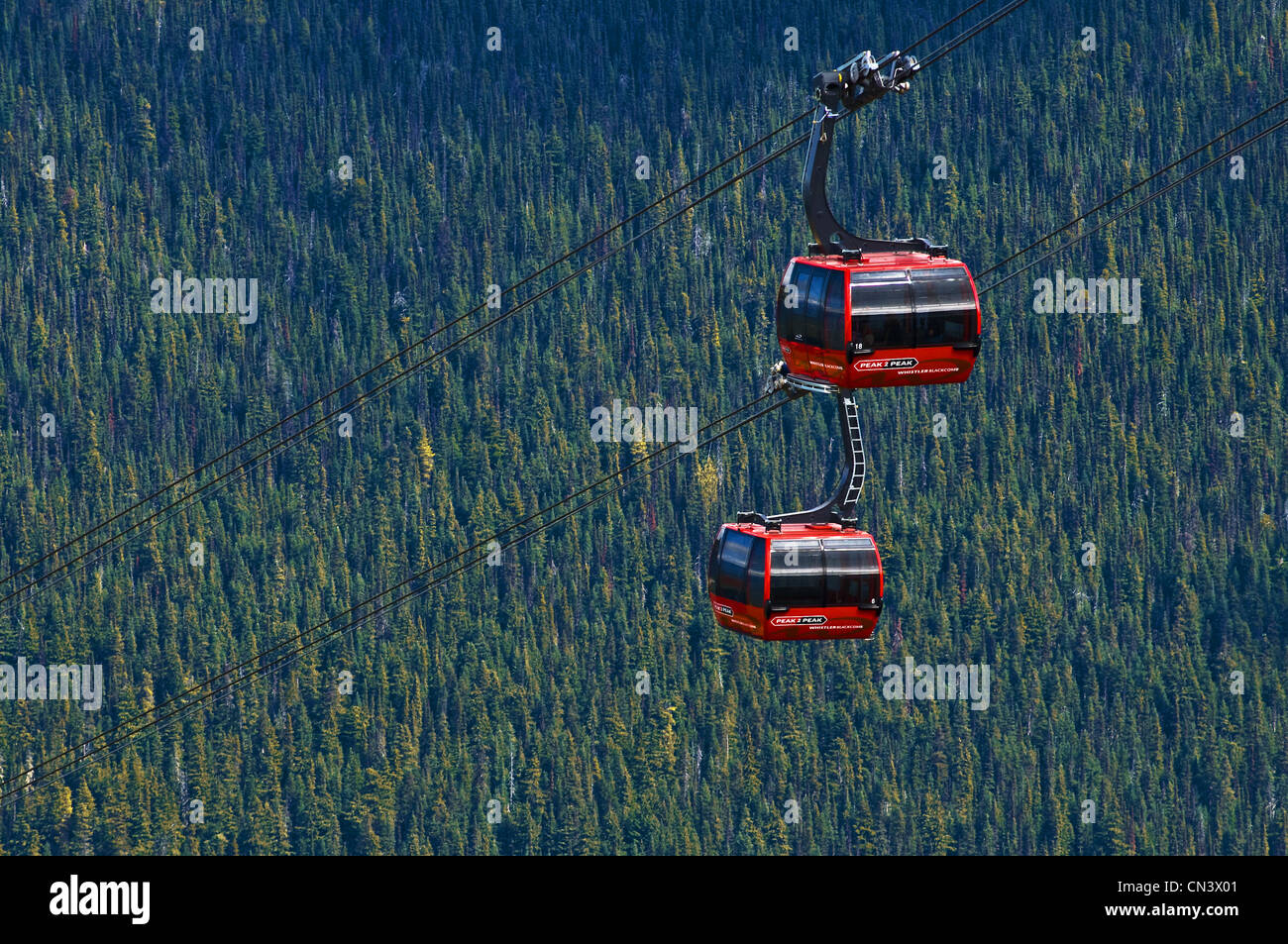 Canada, British Columbia, Whistler, Olympic Games winter 2010, 80 Km north of Vancouver, area of Garibaldi Peak, - Stock Image