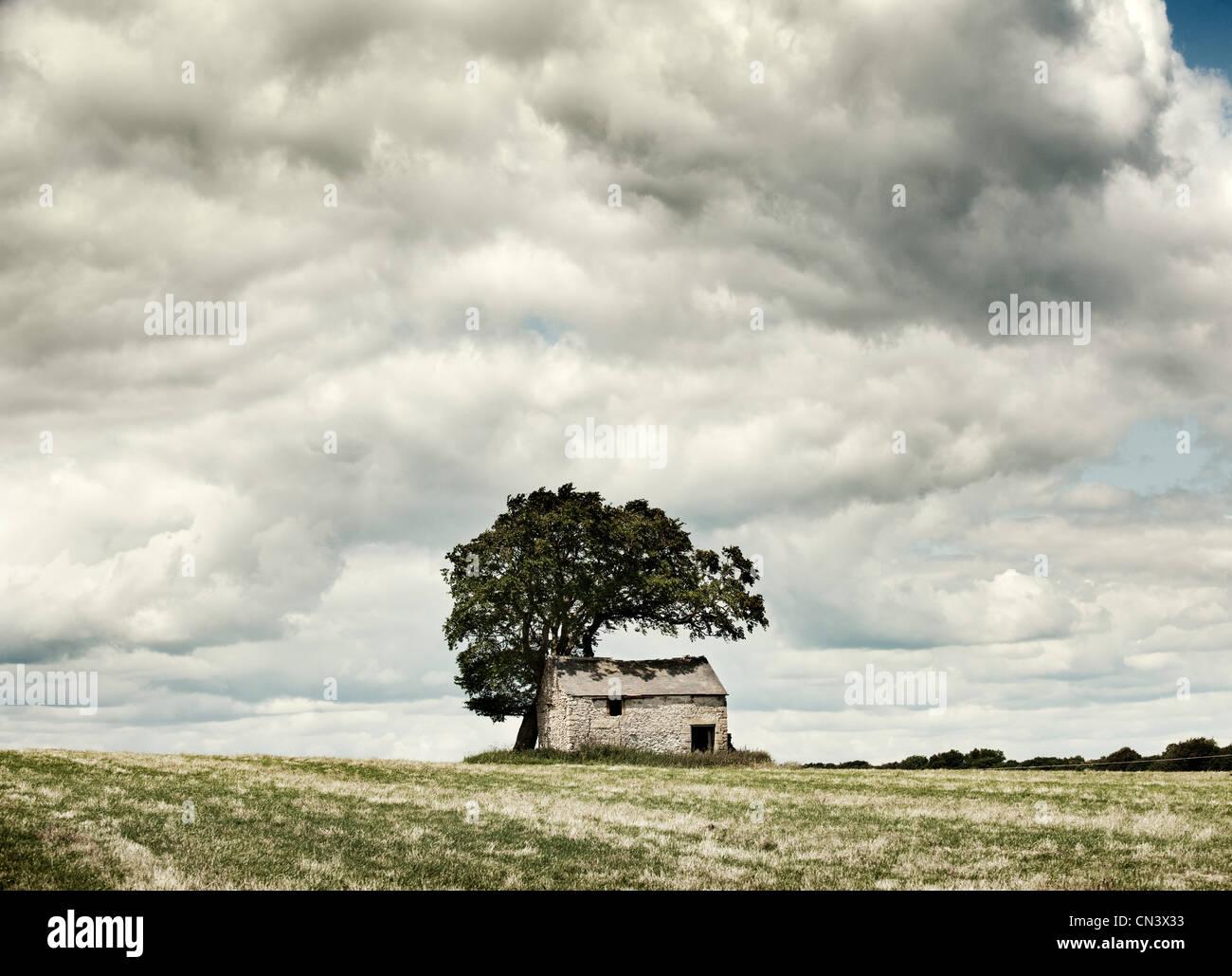 Barn in a field - Stock Image