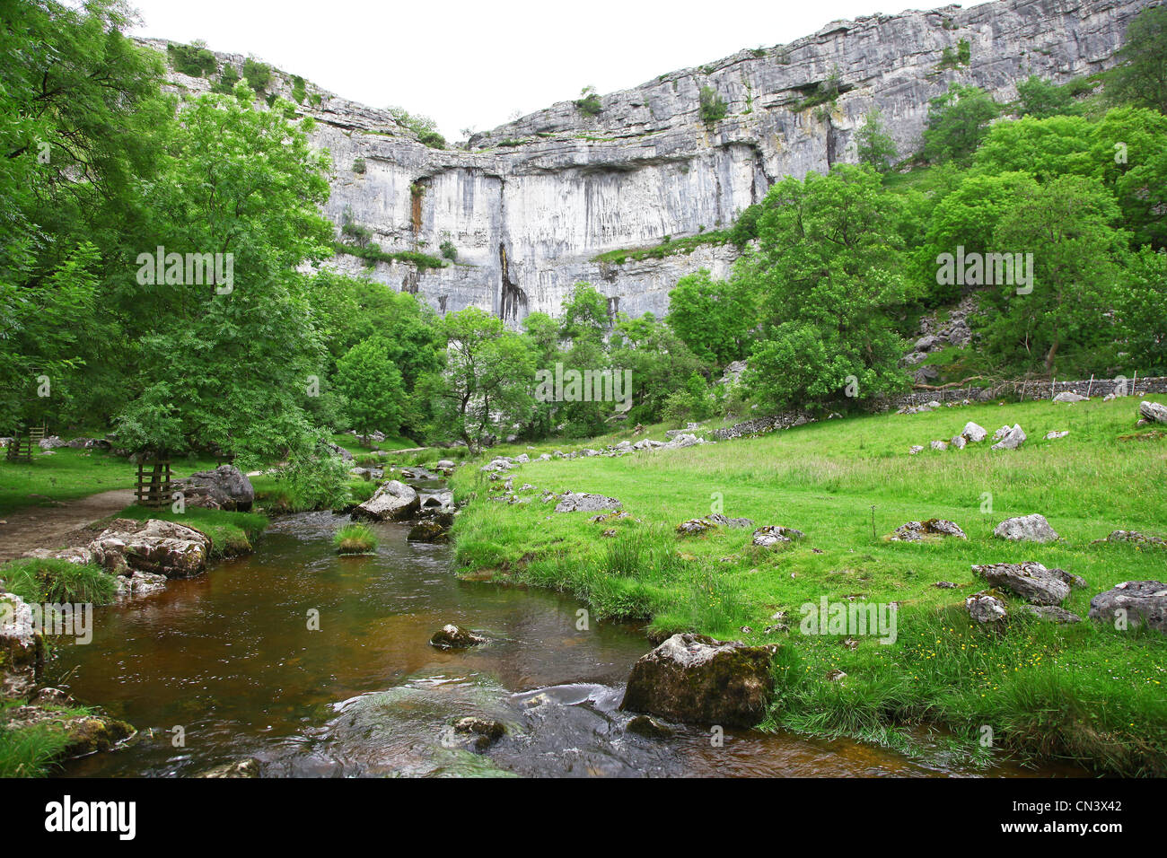 Malham Beck stream Malham Cove, North Yorkshire, Yorkshire Dales National Park, England, UK - Stock Image