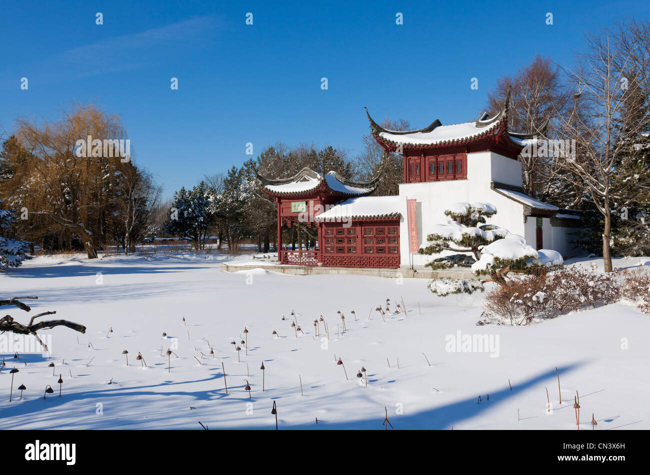 Canada, Quebec province, Montreal, the Botanical Garden in the snow, the Chinese garden and pagoda - Stock Image
