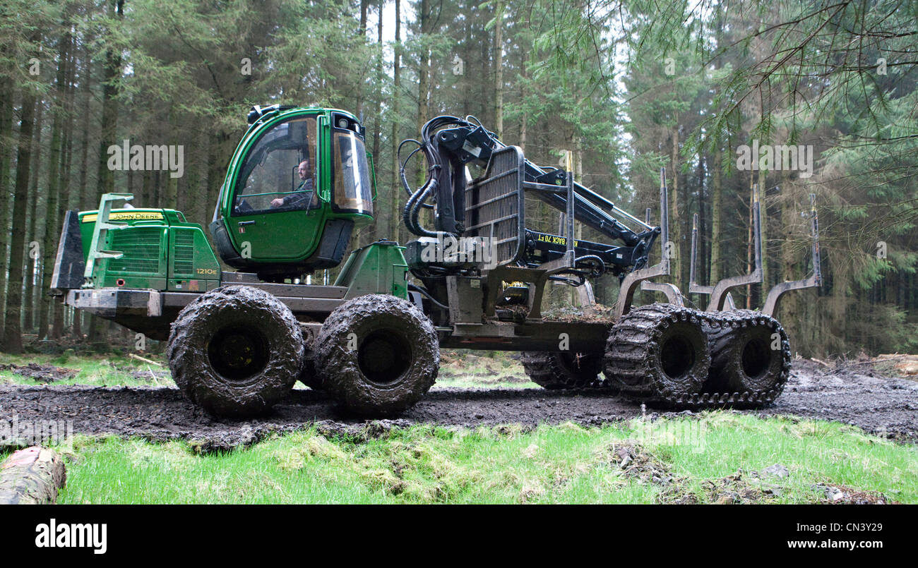 Commercial forestry a forwarder, all terrain vehicle, working picking up cut trees lumber in the forest Forestry Stock Photo