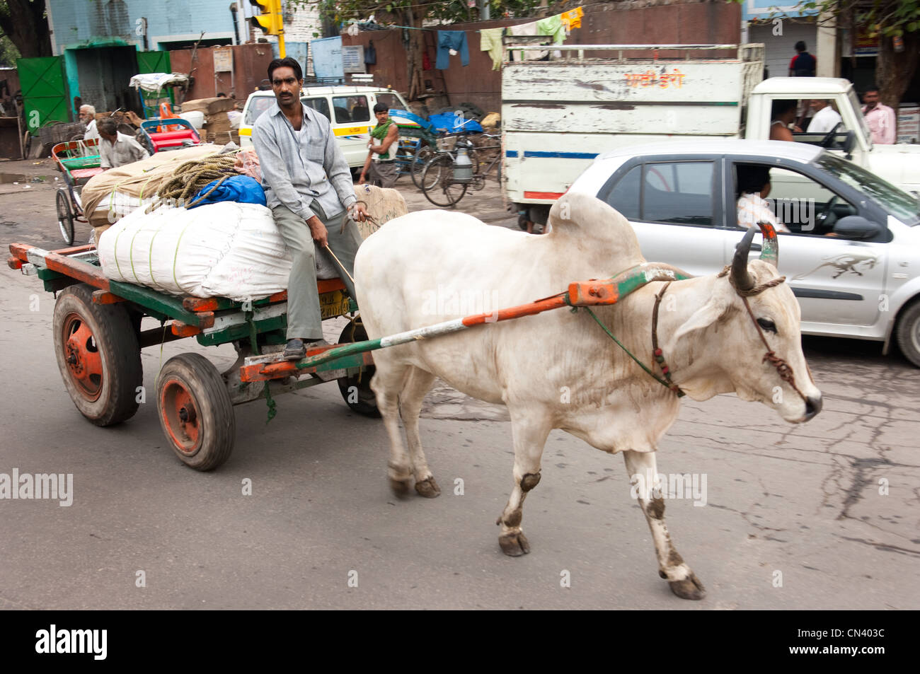A cow pulls a cart in an Indian street - Stock Image