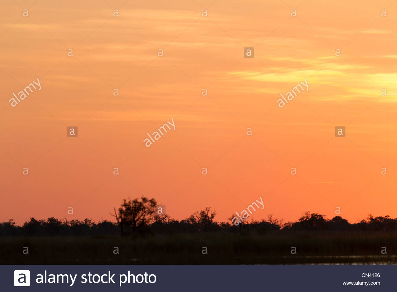 Sunset at Okavango Delta. Botswana. - Stock Image