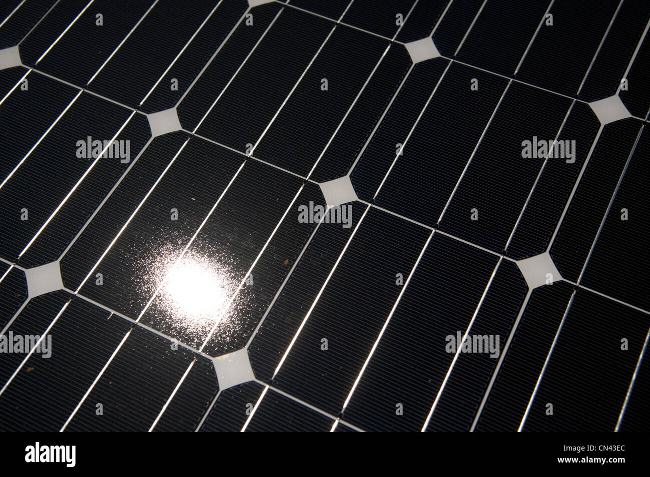 Solar energy solar power Photovoltaic cell cells in an array UK - Stock Image