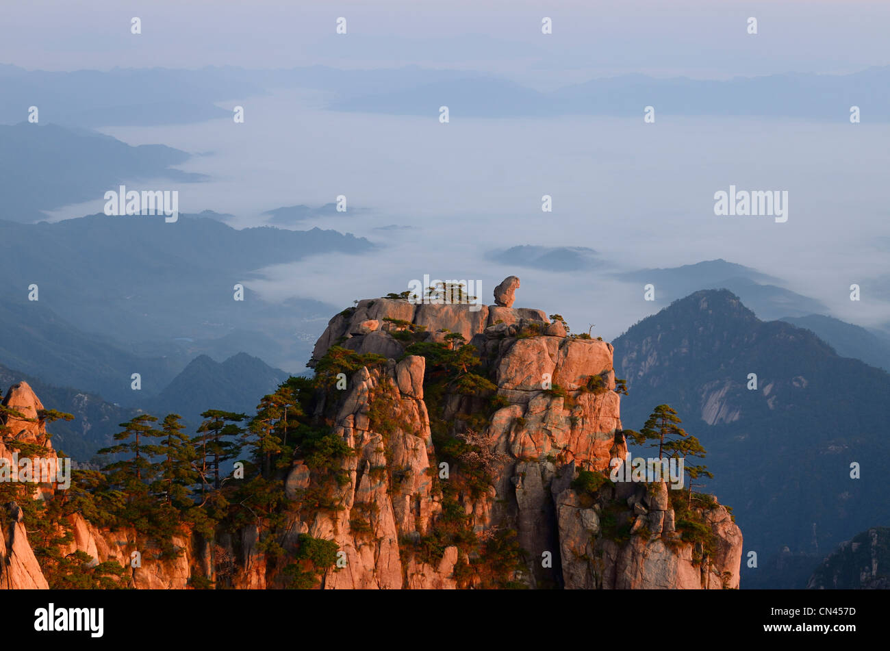 Monkey watching the Sea Peak at first light with fog in valley at Huangshan Yellow Mountain Peoples Republic of - Stock Image