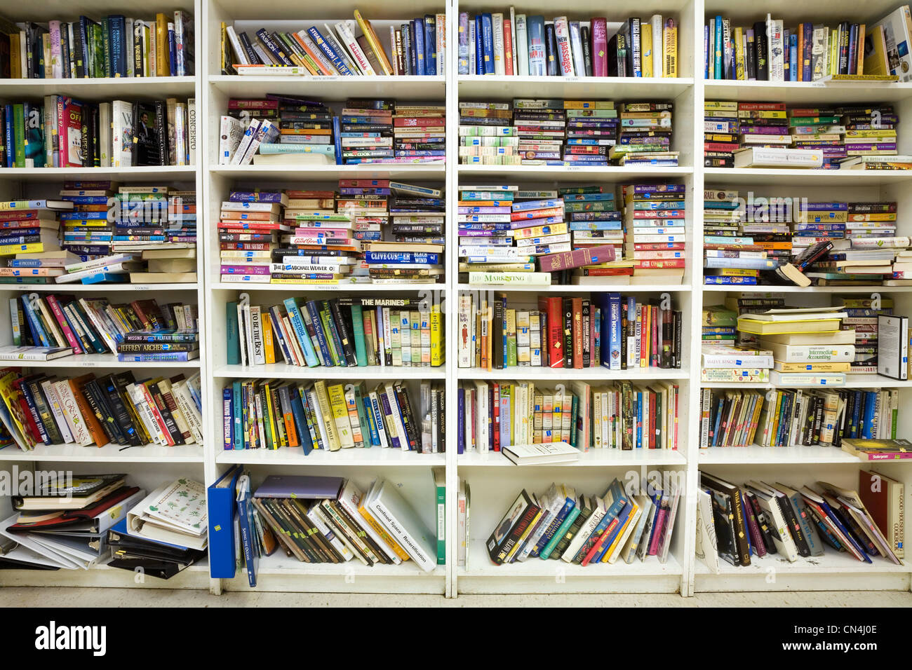 Books on bookshelves - Stock Image