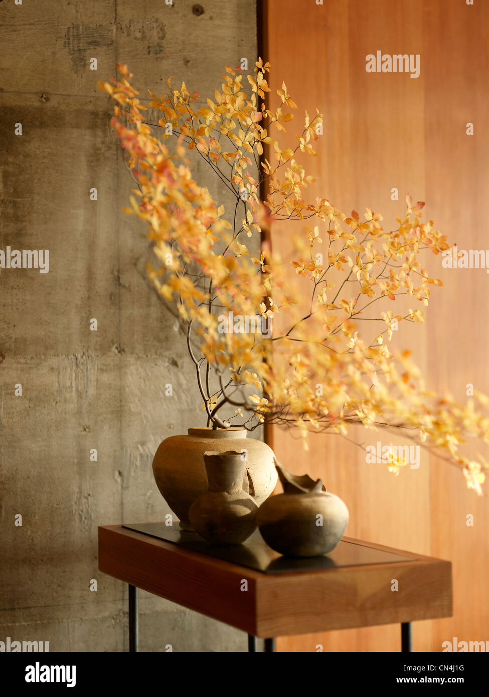 Japan, Tokyo, feature: the Palace of Tokyo, vases and tree branches - Stock Image