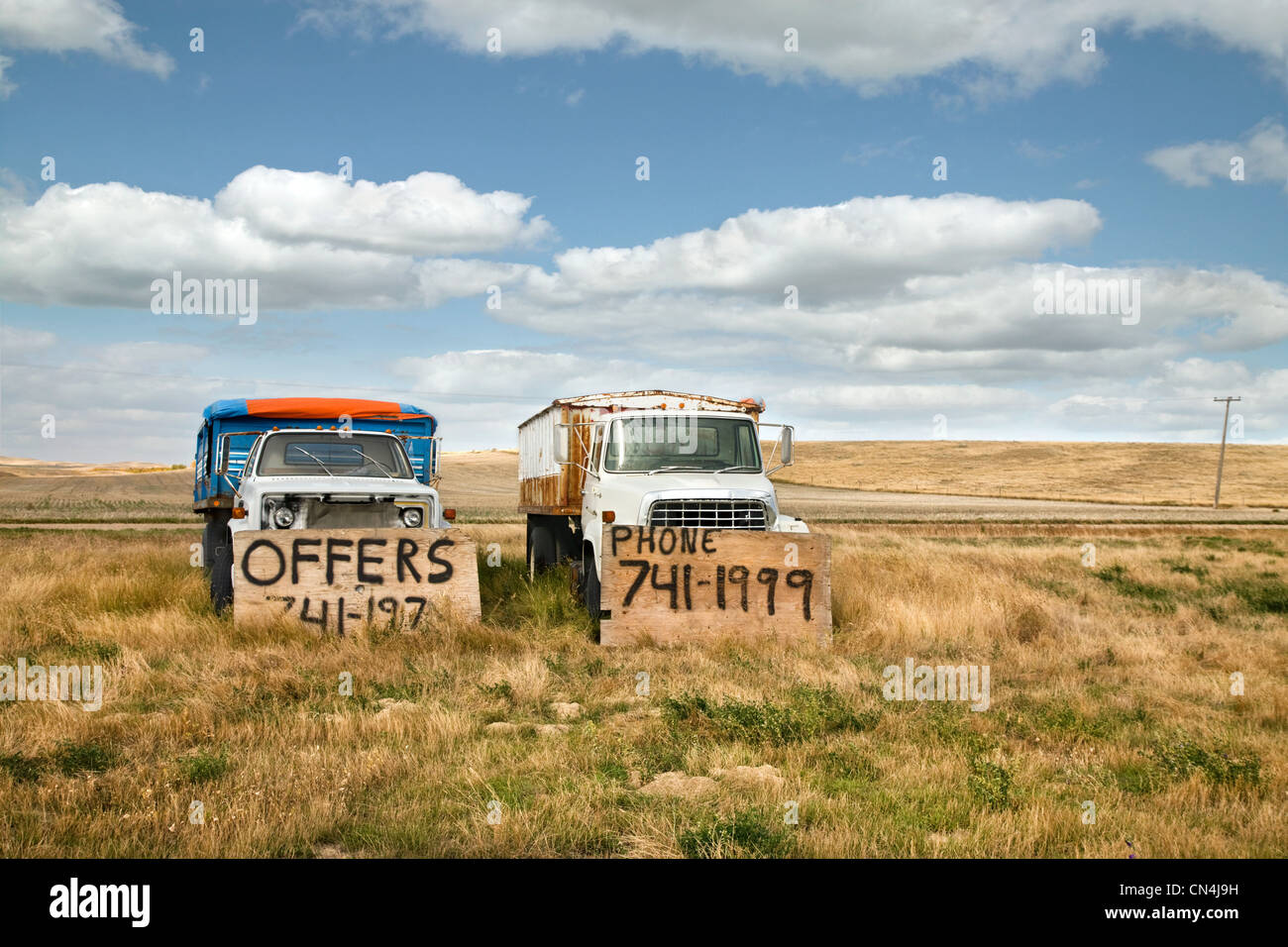 Old trucks for sale in a field Stock Photo
