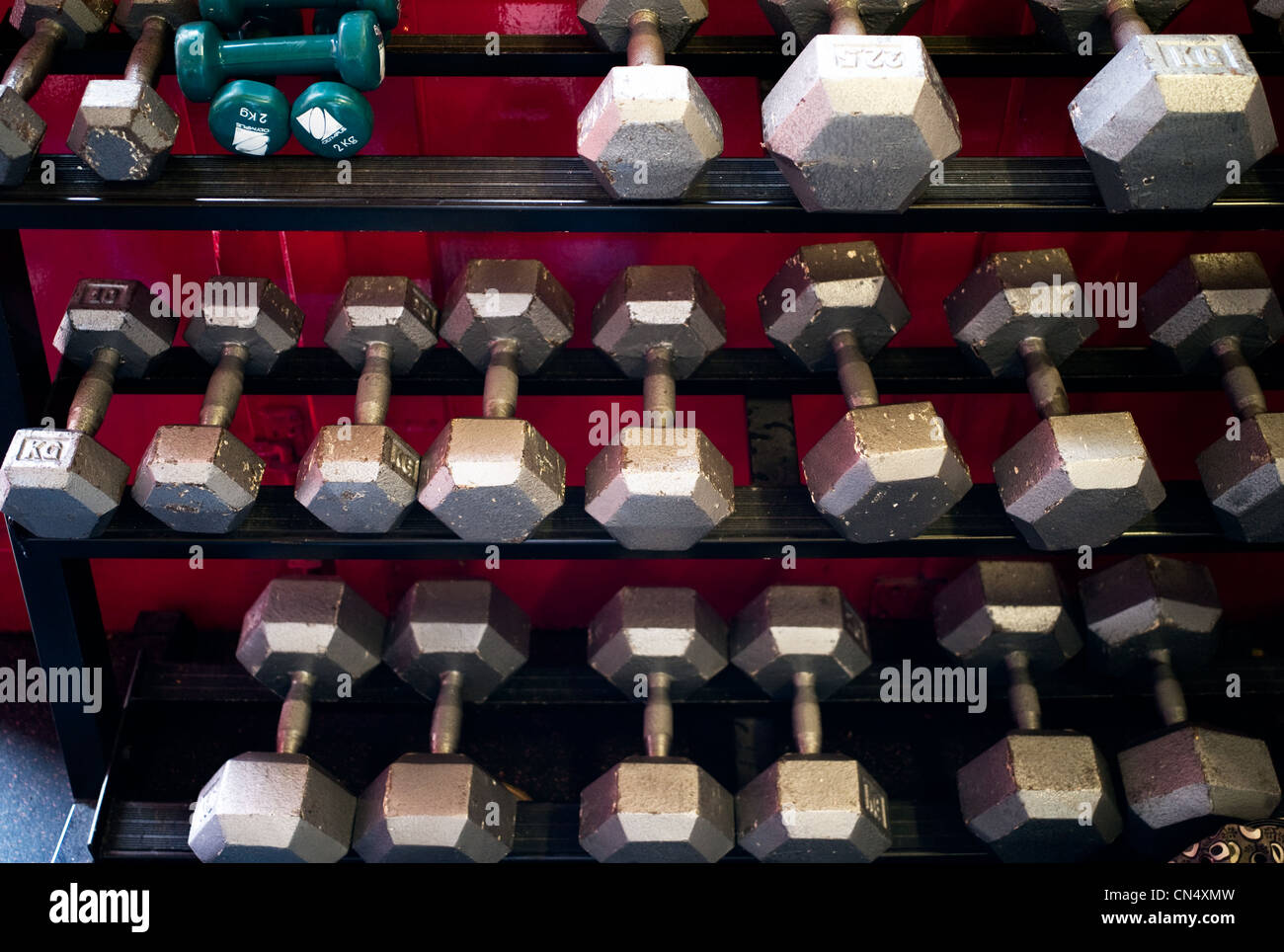 Dunbell weights ordered on shelves in a gym - Stock Image