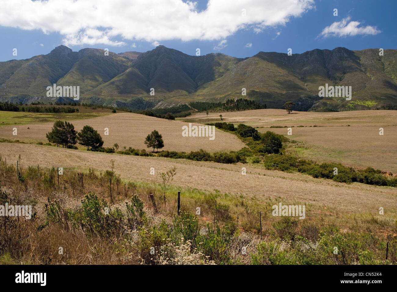 Klein (Little) karoo, N2 road / route near Caledon South Africa - Stock Image