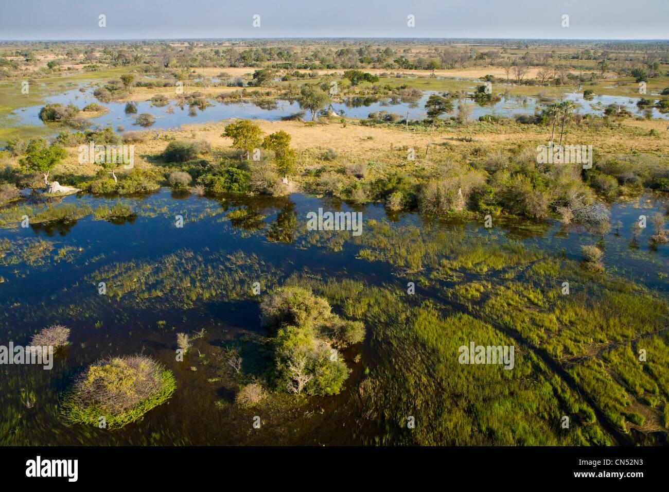 Botswana, Okavango Delta - Stock Image