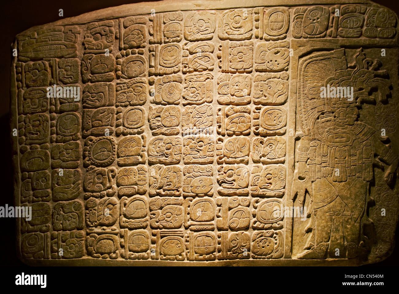 A Mayan stelae from the site of La Corona on display in Guatemala City's National Archaeology Museum. - Stock Image