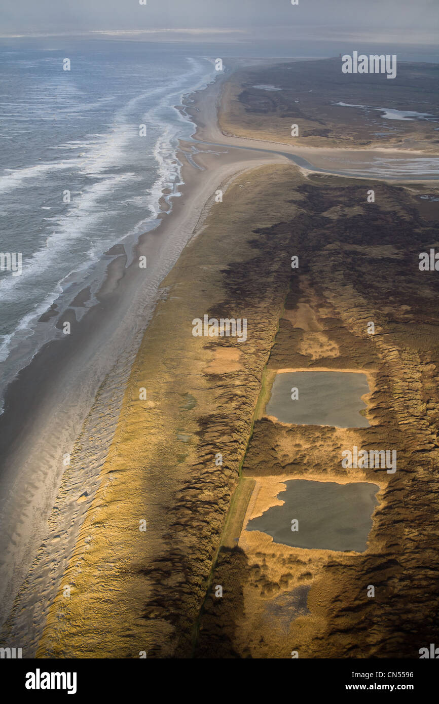 Netherlands, North Holland, Texel, the Western coast of the island, nature reserve (aerial view) - Stock Image