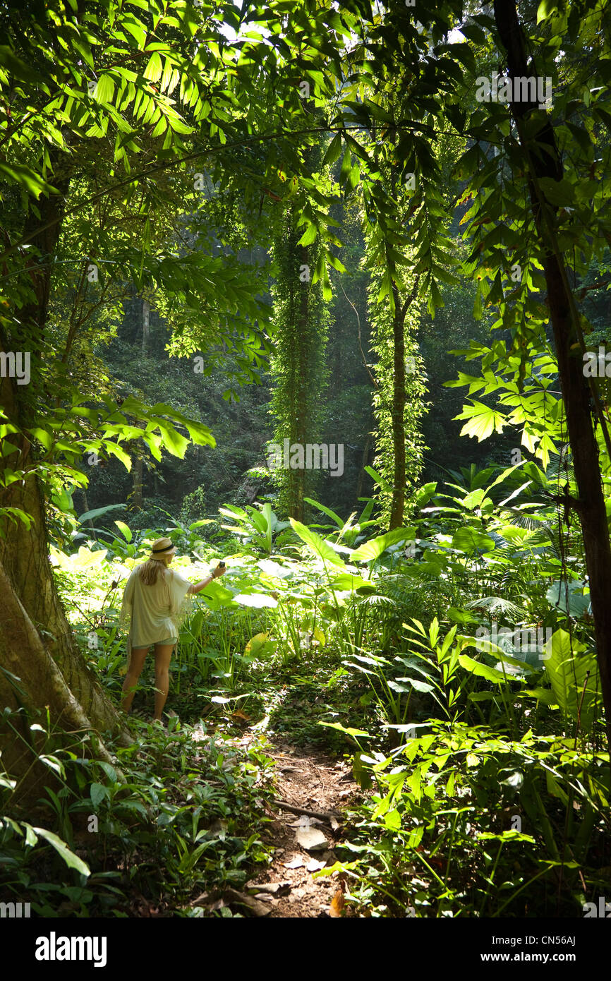 A woman photographs the jungle scene on Koh Yao Noi, one of Thailand's islands. - Stock Image