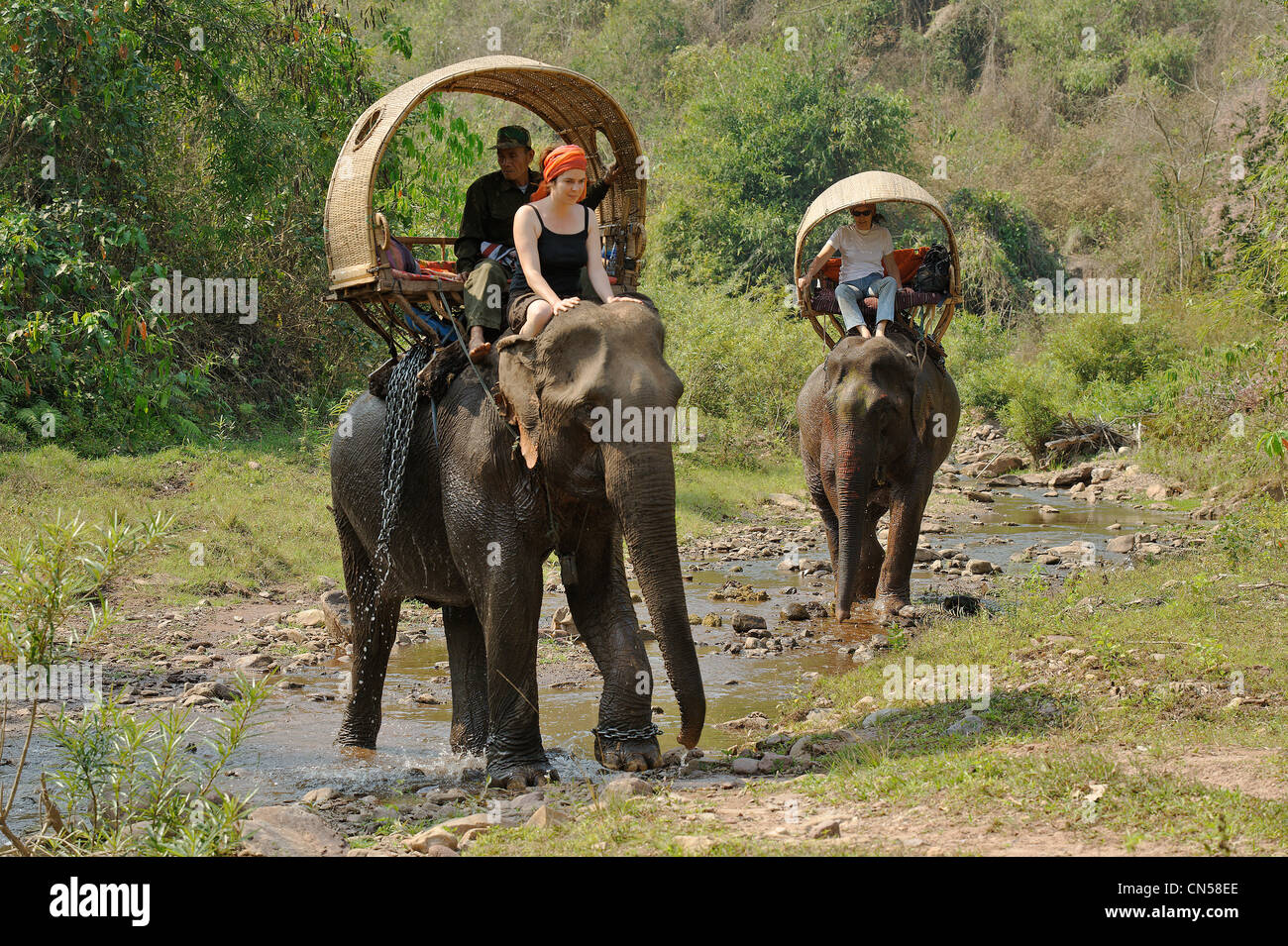 Laos, Sainyabuli Province, Thanoon, trek on elephant back in palanquins, crossing a river - Stock Image